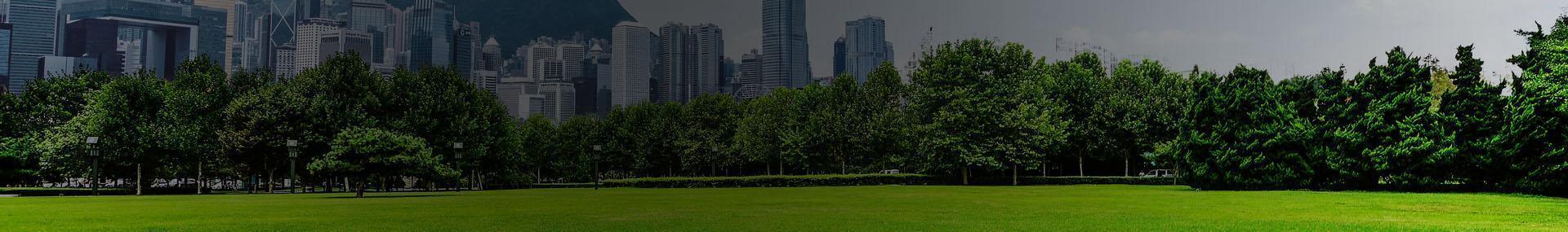 Park miejski w wielkim mieście